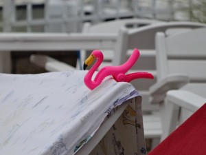 boating flamingo clip